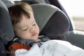 Nap time on the way to the zoo.