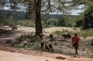 Masai_Mara_20130726_360