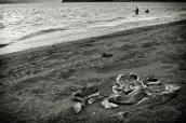 Kenai_Beach_99-Edit